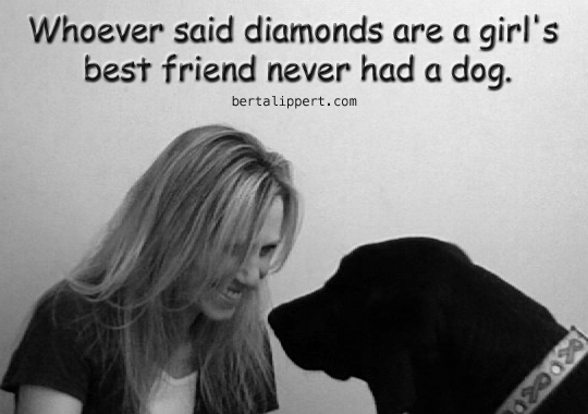 diamonds best friend never had dog
