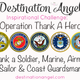 destination angel inspirational challenge thank a hero